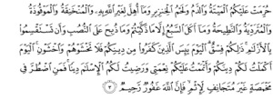 Arabic text of Qur'an 5:3; image from quran.com.